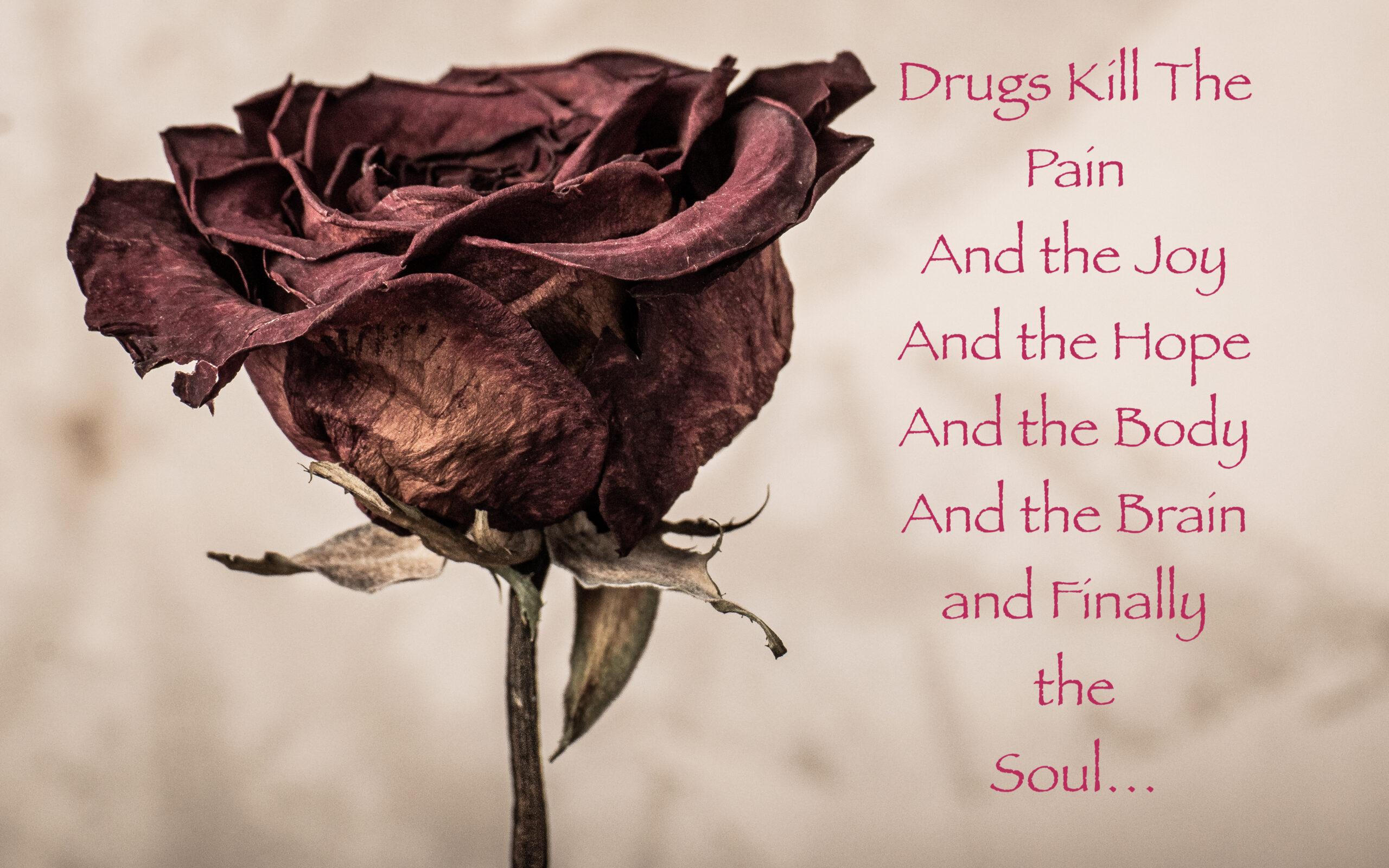 Drugs Kill the Pain